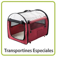 Transportines especiales para perros
